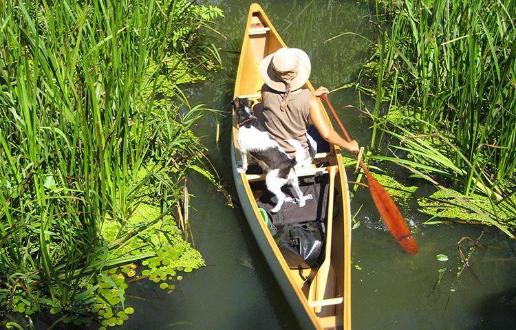 geführte Kanutour durch den Trockenpolder Lunow-Stolpe, Foto: M.Voigt