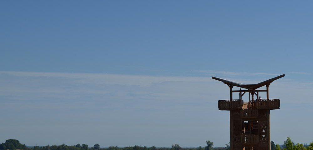 zweiter neuer Beobachtungsturm bei Mescherin mit Blick auf den Staffelder Polder (Deichschlitzungen) und auf die Westoder, Foto: M.Voigt