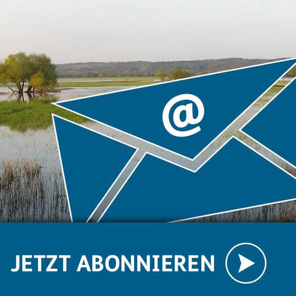 Newsletter abonieren