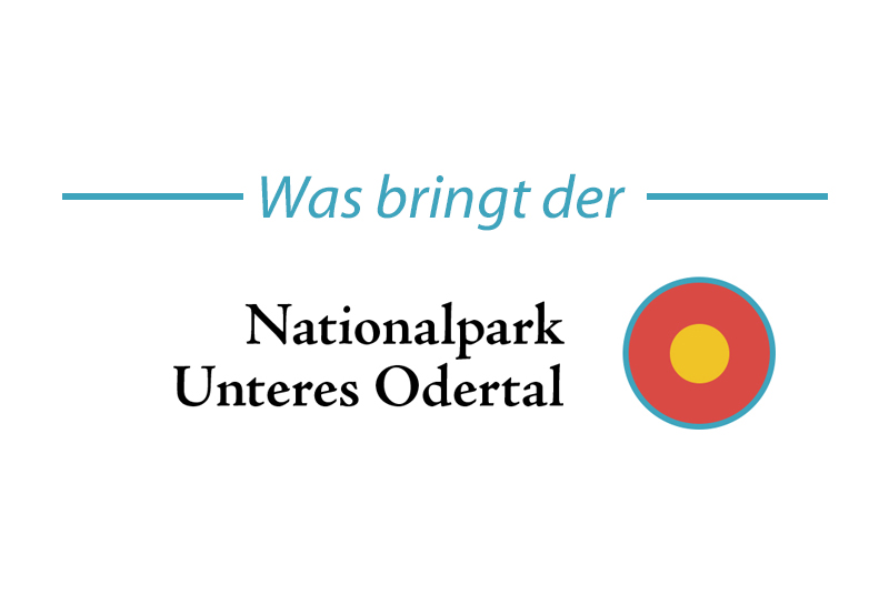 Was bringt der Nationalpark Unteres Odertal