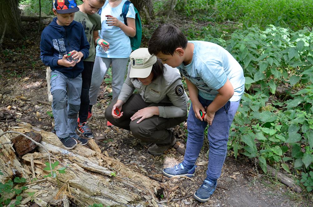 Kinder auf Entdeckungstour entlang des Wildnis-Erlebnispads im Nationalpark Unteres Odertal