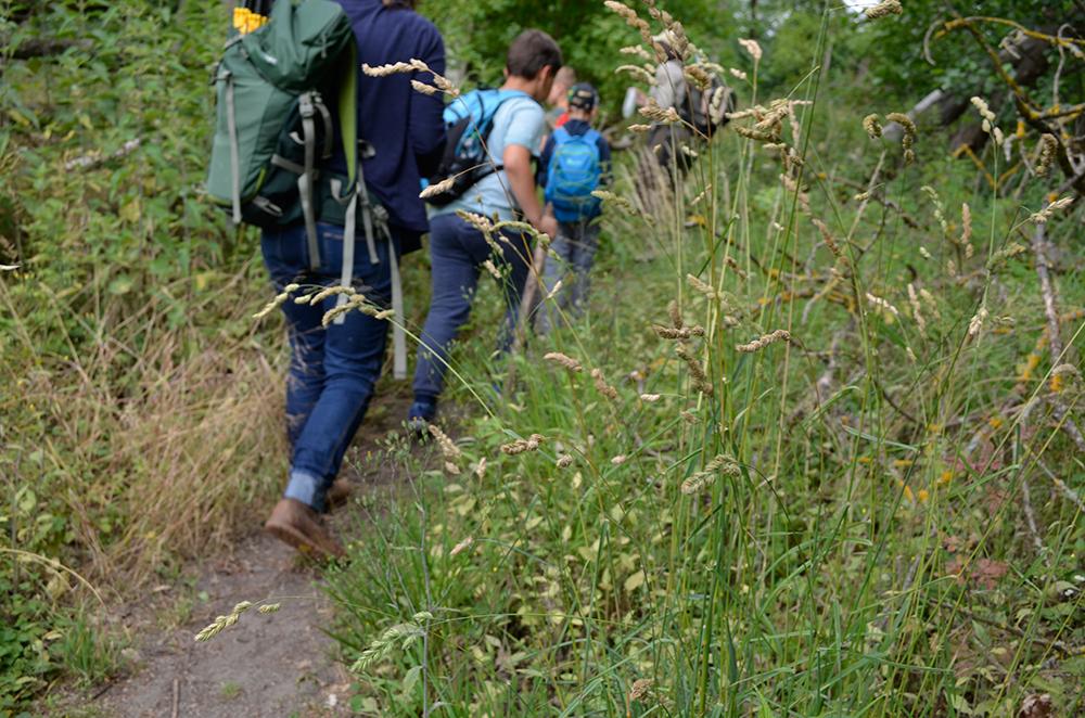 Wanderung auf dem Wildnis-Erlebnispads im Nationalpark Unteres Odertal