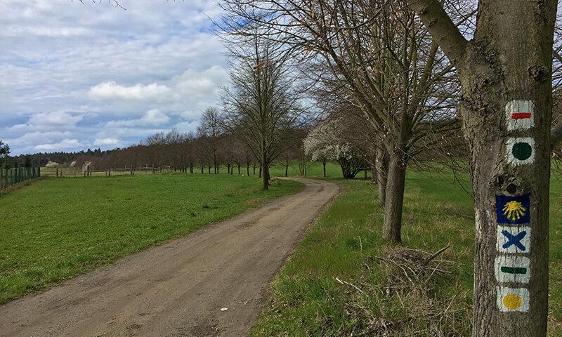 Der Jakobsweg führt durch den Nationalpark Unteres Odertal