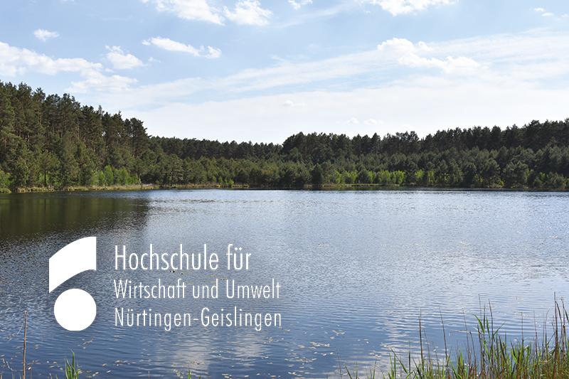Online-Befragung Wie schön ist Brandenburg?